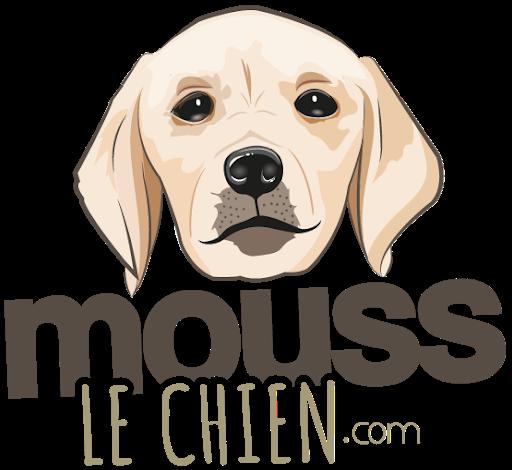 mouss-n-cie